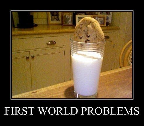 First World Problem.jpg