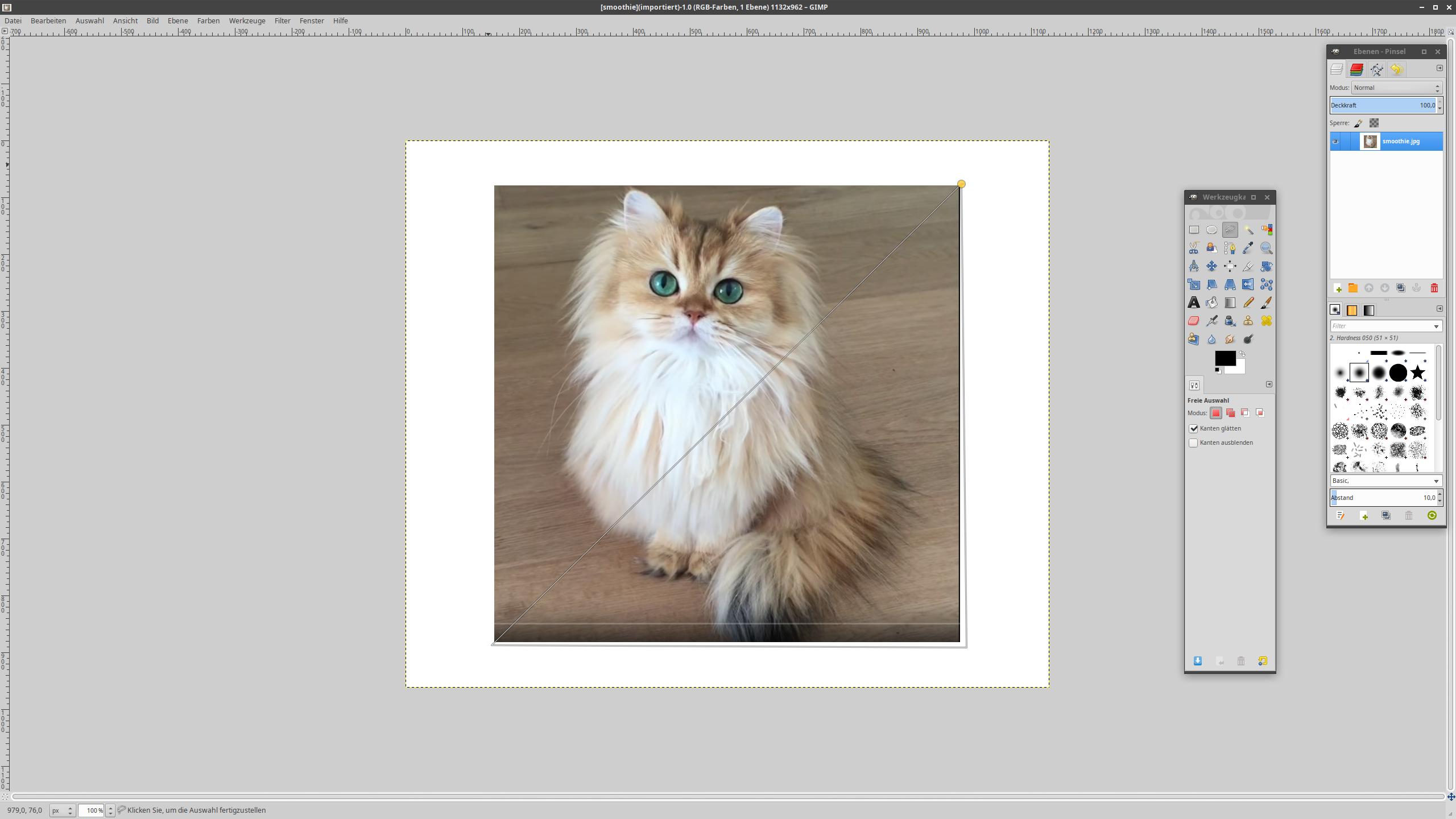 [smoothie](importiert)-1.0 (RGB-Farben, 1 Ebene) 1132x962 – GIMP_011.png
