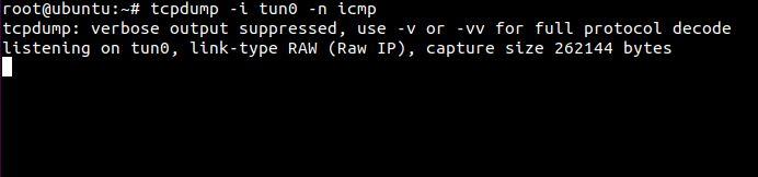 tcpdump_linux-system_tun0.JPG