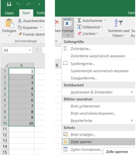 Excel - Funktion in Zelle die nicht überschrieben werden kann ...